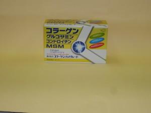 DSC00527-s